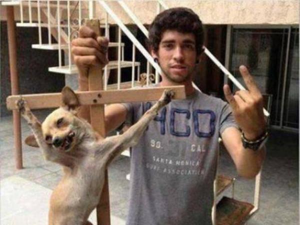 Jovem crucifica cachorra e posta foto na internet