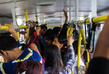 Imagem ônibus ( Reprodução)